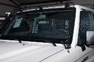 Vehicle security grilles