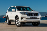 New Prado in Stock
